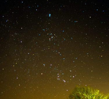 StarryNight_Website